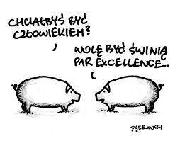 świnia chce być świnią