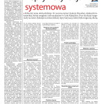 Reprywatyzacja systemowa